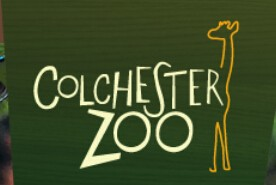 Colchester Zoo Coupons