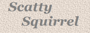 scattysquirrel.co.uk