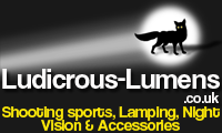 Ludicrous-Lumens Coupons
