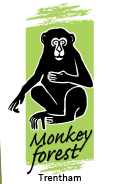 Trentham Monkey Forest Coupons
